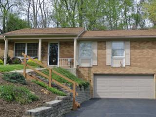 909  Clifton Road  , Bethel Park, PA 15102 (MLS #1055359) :: Keller Williams Realty