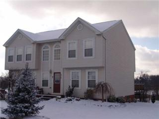 313  Kennett Drive  , Elizabeth Twp/Boro, PA 15037 (MLS #989618) :: Keller Williams Pittsburgh