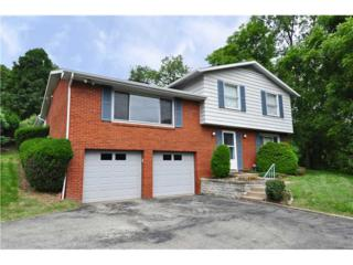 110  Fenwick Drive  , Churchill Boro, PA 15235 (MLS #1020485) :: Keller Williams Pittsburgh