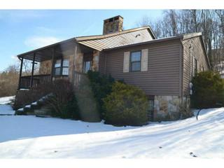 251  Scenery Drive  , Elizabeth Twp/Boro, PA 15037 (MLS #1040283) :: Keller Williams Pittsburgh