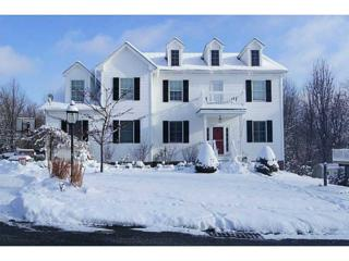 160  Summerlawn Drive  , Bell Acres, PA 15143 (MLS #1041826) :: Keller Williams Realty