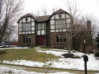 10112  Deer View Pt. Rd.  , Mccandless, PA 15090 (MLS #1046844) :: Keller Williams Pittsburgh