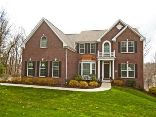 211  Overlook Drive  , Peters Twp, PA 15317 (MLS #1052608) :: Keller Williams Realty