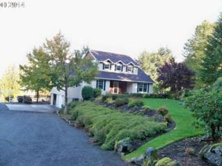 404 NE 310TH Cir  , Ridgefield, WA 98642 (MLS #14059984) :: Portland Real Estate Group