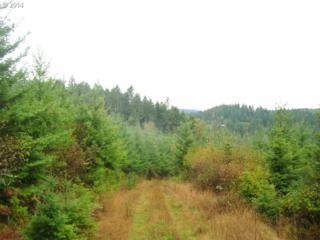Hall Rd (South)  , Junction City, OR 97448 (MLS #14086771) :: Realty Edge - Better Homes and Gardens Realty Partners