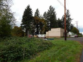 865  875, 885 5TH St  , Clatskanie, OR 97016 (MLS #14115098) :: Ormiston Investment Group - Northwest Realty Elite