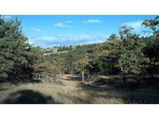 Columbia Hills  , Goldendale, WA 98620 (MLS #14200737) :: Portland Real Estate Group