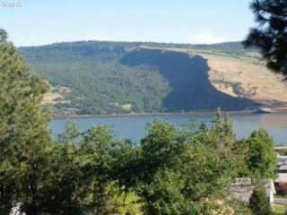 Fifth Ave  1401, Mosier, OR 97040 (MLS #14229927) :: Ormiston Investment Group - Northwest Realty Elite