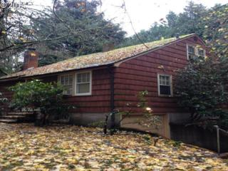 13070  Boones Ferry Rd  , Lake Oswego, OR 97035 (MLS #14250199) :: Hasson Company Realtors