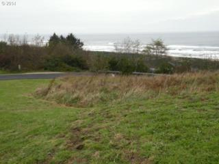 Tyee Ct  79, Neskowin, OR 97149 (MLS #14387006) :: Ormiston Investment Group - Northwest Realty Elite