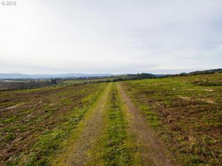 38665 NW Harrison Rd  , Banks, OR 97106 (MLS #14396288) :: Ormiston Investment Group - Northwest Realty Elite
