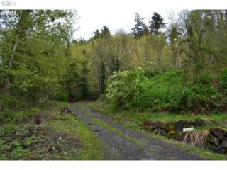 13864  Clackamas River Dr  , Oregon City, OR 97045 (MLS #14403871) :: Realty Edge - Better Homes and Gardens Realty Partners