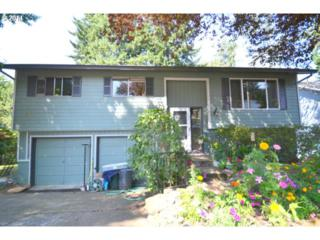 811 NE Foothills Dr  , Estacada, OR 97023 (MLS #14407345) :: Realty Edge - Better Homes and Gardens Realty Partners