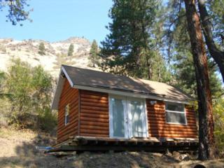 0  Mustang Way  , Imnaha, OR 97842 (MLS #14409406) :: Portland Real Estate Group