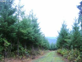 Hall Rd (North)  , Junction City, OR 97448 (MLS #14482007) :: Realty Edge - Better Homes and Gardens Realty Partners
