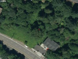 SW Beaverton Hillsdale Hwy  19, Portland, OR 97221 (MLS #14483256) :: Stellar Realty Northwest