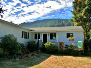 162  Spicer St  , Elkton, OR 97436 (MLS #14490243) :: The Rian Group Real Estate
