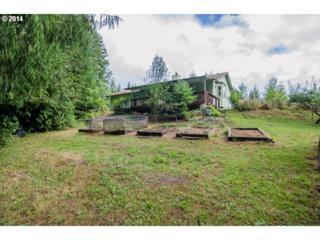 16312 S Union Mills Rd  , Mulino, OR 97042 (MLS #14543587) :: The Rian Group Real Estate