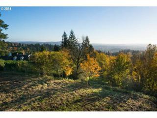 1721 SW 61ST Ave  , Portland, OR 97221 (MLS #14572315) :: Stellar Realty Northwest