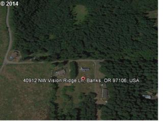 40912 NW Vision Ridge Ln  , Banks, OR 97106 (MLS #14605844) :: Portland Real Estate Group