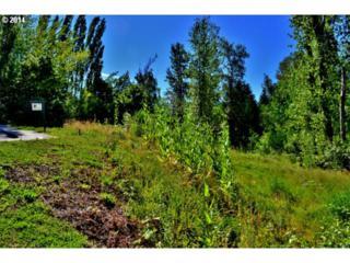 5722 SE 18th Ct  , Gresham, OR 97080 (MLS #14686891) :: Portland Real Estate Group