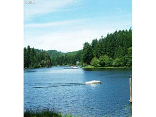 0  Big Creek Arm  , Lakeside, OR 97449 (MLS #15172313) :: Realty Edge - Better Homes and Gardens Realty Partners