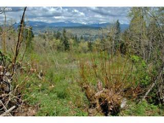 62  Stella Royal Ln  , Washougal, WA 98671 (MLS #15240582) :: The Rian Group Real Estate