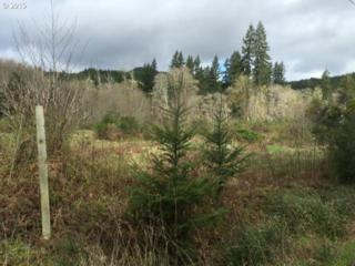 Hwy. 202 Lot 300  , Jewell, OR 97016 (MLS #15267722) :: Portland Real Estate Group