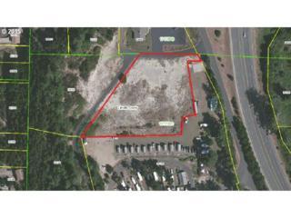 301 SW Minor Road  , Waldport, OR 97394 (MLS #15278103) :: Portland Real Estate Group