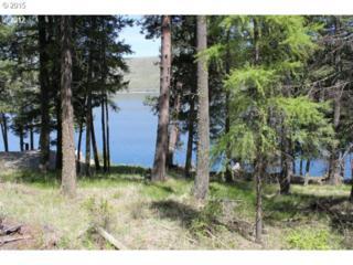 Lake Shore Dr  , Wallowa Lake, OR 97846 (MLS #15351708) :: Stellar Realty Northwest