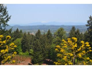 22588 S Jessica Ln  , Estacada, OR 97023 (MLS #15381462) :: Realty Edge - Better Homes and Gardens Realty Partners