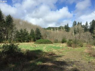 Hwy. 202 Lot 102  , Jewell, OR 97016 (MLS #15428559) :: Portland Real Estate Group