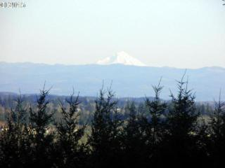 14950 NW Blacktail Ln  3, Mcminnville, OR 97128 (MLS #15524462) :: Ormiston Investment Group - Northwest Realty Elite