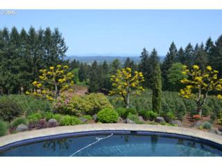 22686 S Jessica Ln  , Estacada, OR 97023 (MLS #15529997) :: Realty Edge - Better Homes and Gardens Realty Partners