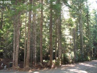 93720 E Deer Fern Ln  , Government Camp, OR 97028 (MLS #15536321) :: Ken's Home Team, LLC