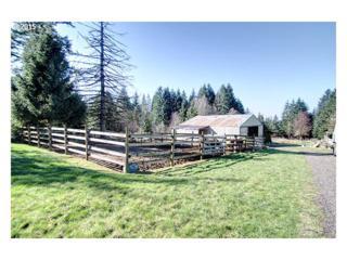 47250 SE Clausen Rd  , Estacada, OR 97023 (MLS #15606411) :: Portland Real Estate Group