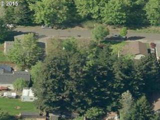 21637 SE Ash St  , Gresham, OR 97030 (MLS #15615501) :: Portland Real Estate Group