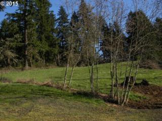 E Madison  , Cottage Grove, OR 97424 (MLS #15615504) :: Realty Edge - Better Homes and Gardens Realty Partners