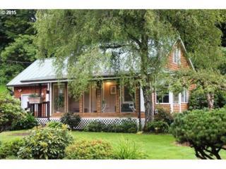 43390  Little Nestucca Hwy  , Cloverdale, OR 97112 (MLS #15645871) :: Ormiston Investment Group - Northwest Realty Elite