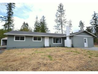 40197 SE Kitzmiller Rd  , Eagle Creek, OR 97022 (MLS #14393588) :: Realty Edge - Better Homes and Gardens Realty Partners