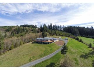 32490 SE Rainbow Rd  , Estacada, OR 97023 (MLS #14430225) :: Realty Edge - Better Homes and Gardens Realty Partners