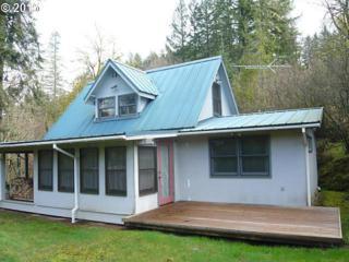 17905 NE Cole Witter Rd  , Battle Ground, WA 98604 (MLS #15610451) :: Ormiston Investment Group - Northwest Realty Elite