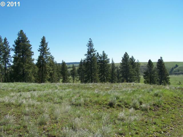 0 Zumwalt Rd0 - Photo 9