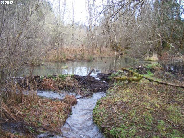 Mohawk River Rd - Photo 9