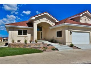 436  Twilight Mountain View  , Colorado Springs, CO 80921 (#1077546) :: Cherry Creek Properties, LLC