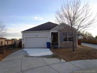 8433  Snowdrop Court  , Fountain, CO 80817 (#1089586) :: Action Team Realty