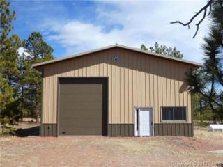 1095  Doe Valley Road  , Guffey, CO 80820 (#1183627) :: Action Team Realty