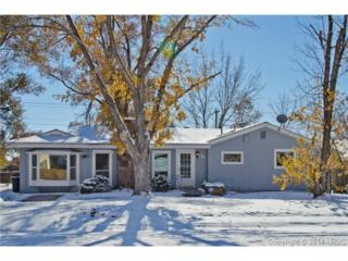 817  Grand Boulevard  , Colorado Springs, CO 80911 (#1480217) :: Cherry Creek Properties, LLC