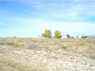 509 N Mcculloch Boulevard  , Pueblo West, CO 81007 (#1639671) :: Cherry Creek Properties, LLC