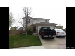 6244  Brantly Court  , Castle Rock, CO 80104 (#1711743) :: Cherry Creek Properties, LLC